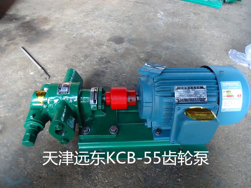 天津远东KCB-55齿轮泵