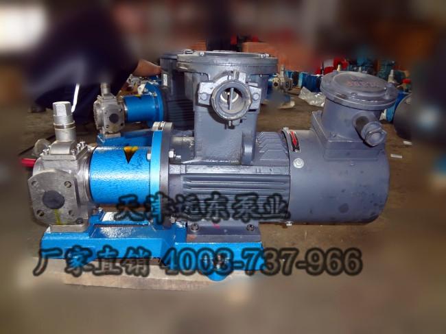 磁力不锈钢齿轮泵